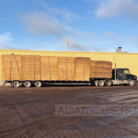 Доставка соломы. 30 тонн за один рейс.