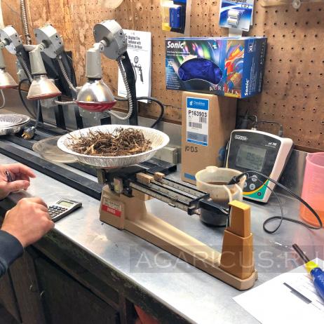 «Лаборатория» для определения влажности и кислотности компоста на компостном производстве.