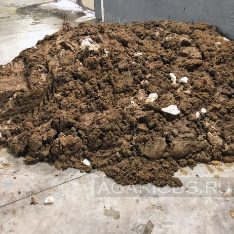 Внешний вид куриного помета, используемого для закладки компоста