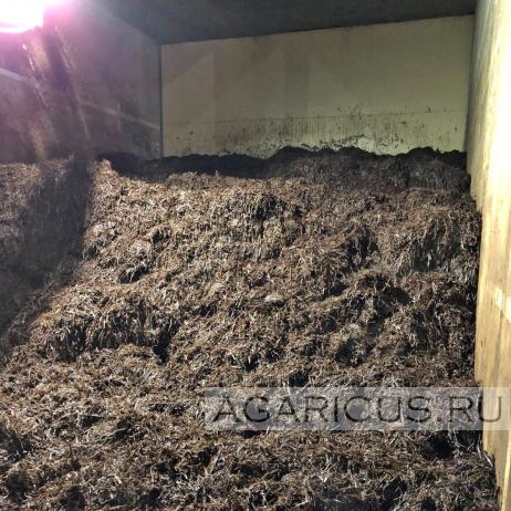 Внешний вид готового компоста 1 фазы при загрузке в тоннель пастеризации