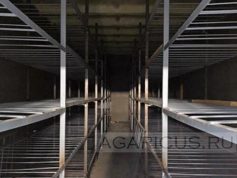 Полки для грибов в камере выращивания.